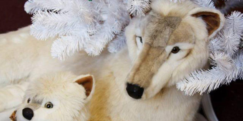Punto per Punto – Piccoli teatranti con una fame da lupi